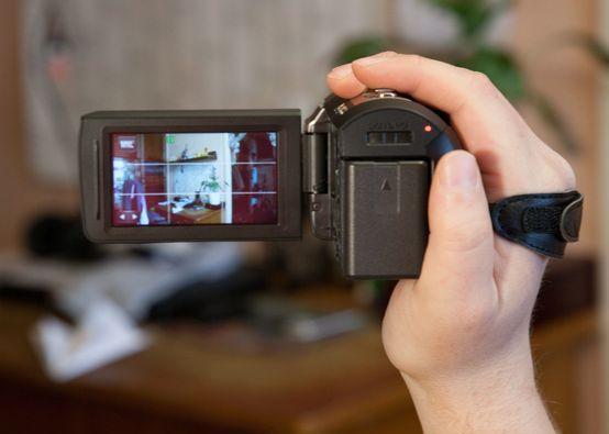 Сетка на ЖК экране камеры.