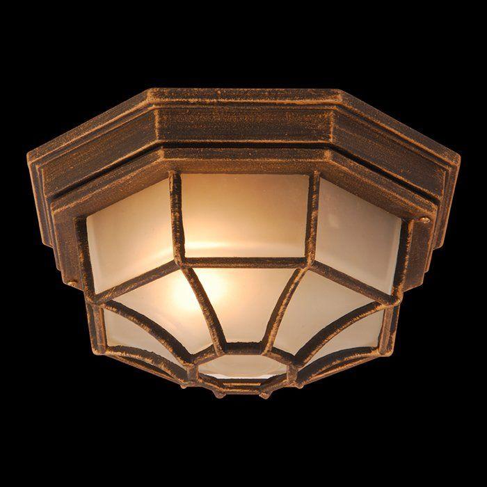 Уличный потолочный светильник PERSEUS 31213. Фото №1