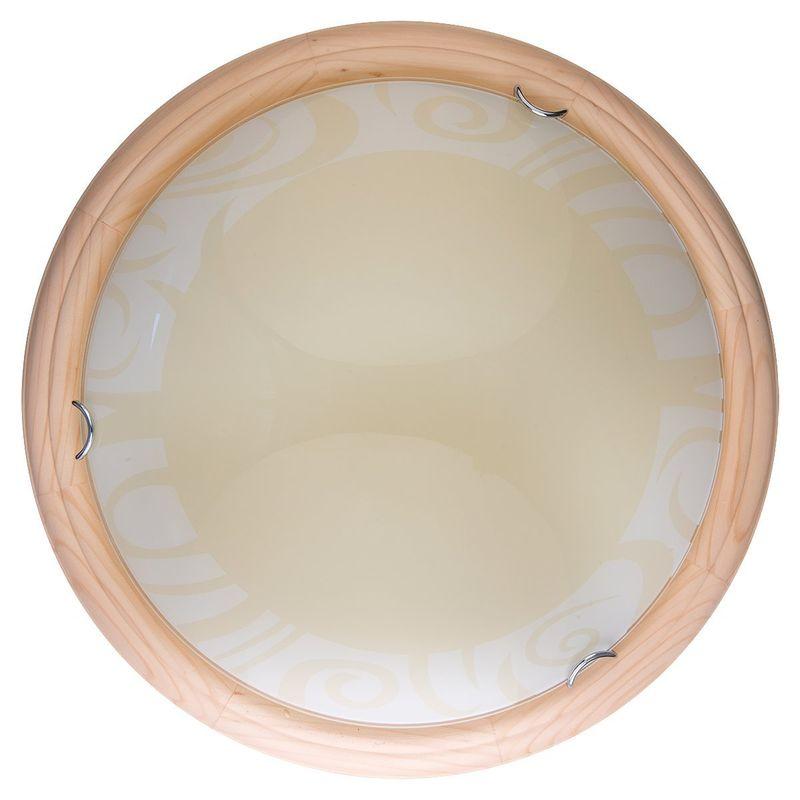 Настенно-потолочный светильник Ginger TL9620Y-00PN