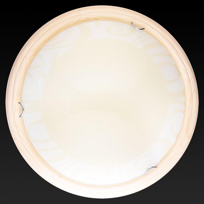 Настенно-потолочный светильник Ginger TL9620Y-00PN. Фото №2