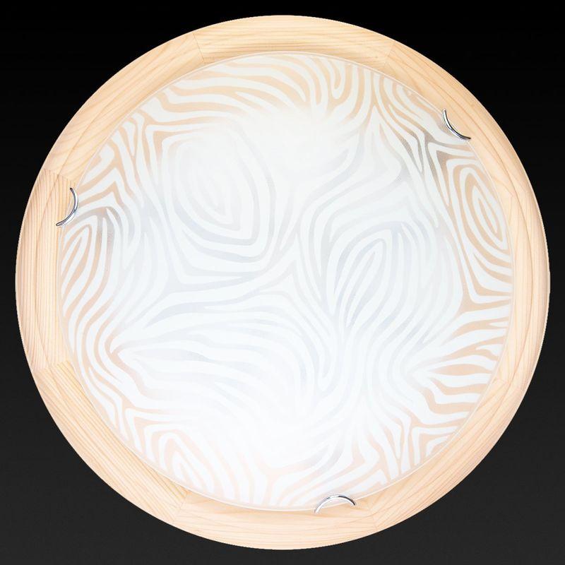 Настенно-потолочный светильник Agatha TL9260Y-00PN. Фото №2