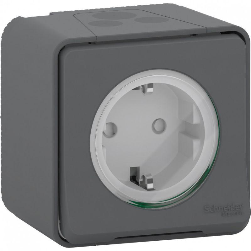 Электрическая розетка Schneider Electric  BD-1493447