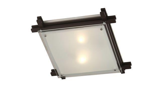 Светильник потолочный Edison 48324-2