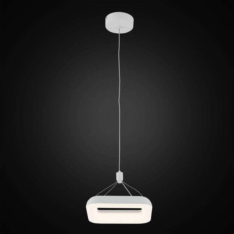 Светильник подвесной Паркер CL225210r. Фото №1