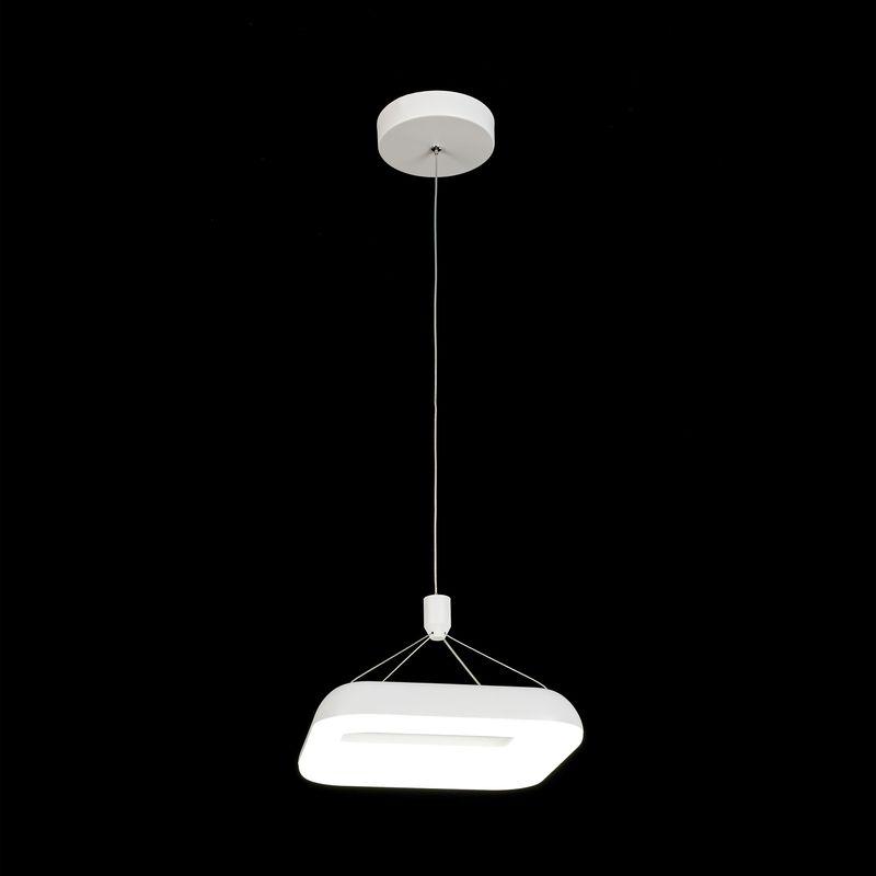 Светильник подвесной Паркер CL225210r. Фото №3