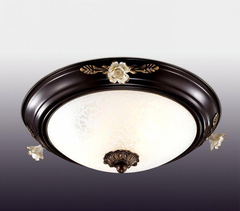 Настенно-потолочный светильник Odeon Light Bone 2693/2C