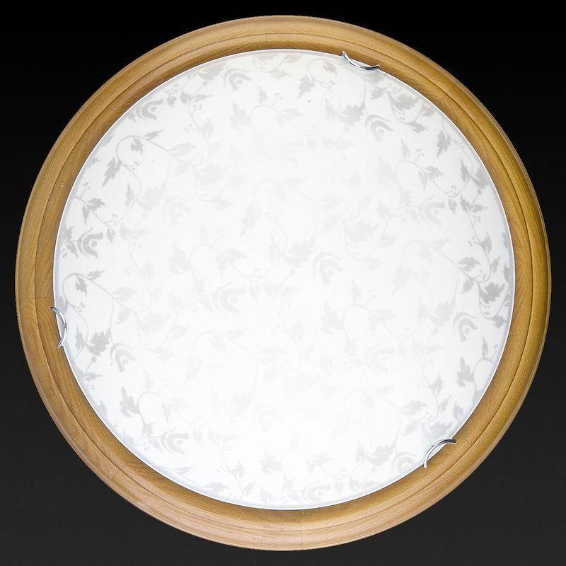 Настенно-потолочный светильник Beatrice TL9280Y-00OA. Фото №2