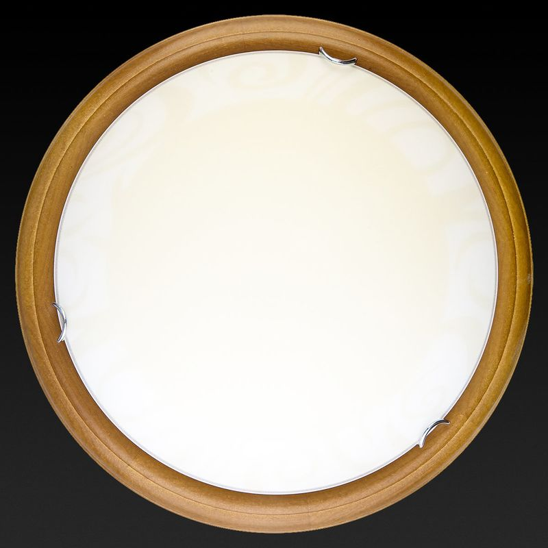 Настенно-потолочный светильник Ginger TL9620Y-00OA. Фото №2