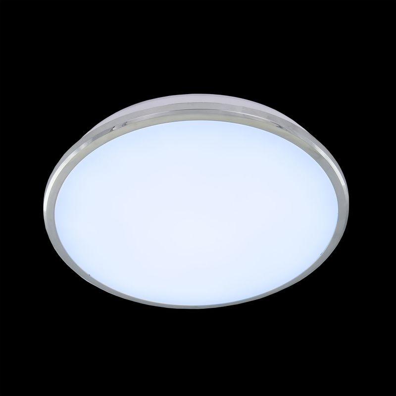Настенно-потолочный светильник Луна CL702221N. Фото №1