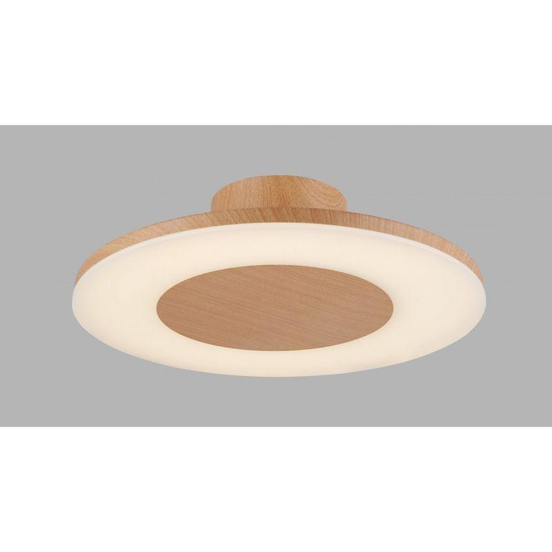 Потолочный светильник Discobolo 4494