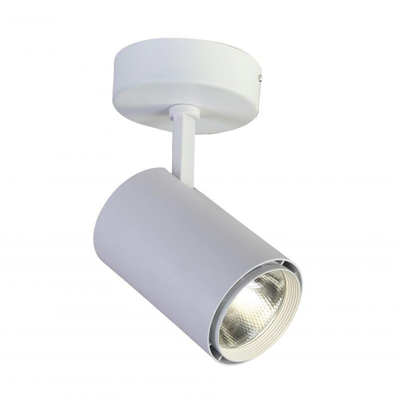 Спот Projector 1773-1U