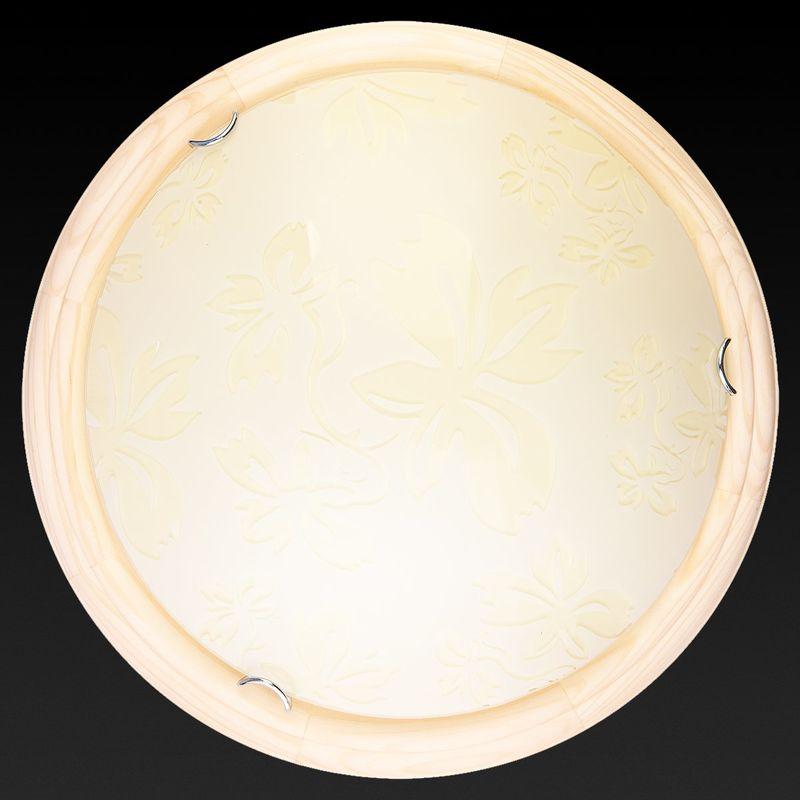 Настенно-потолочный светильник Jane TL9640Y-00PN. Фото №2