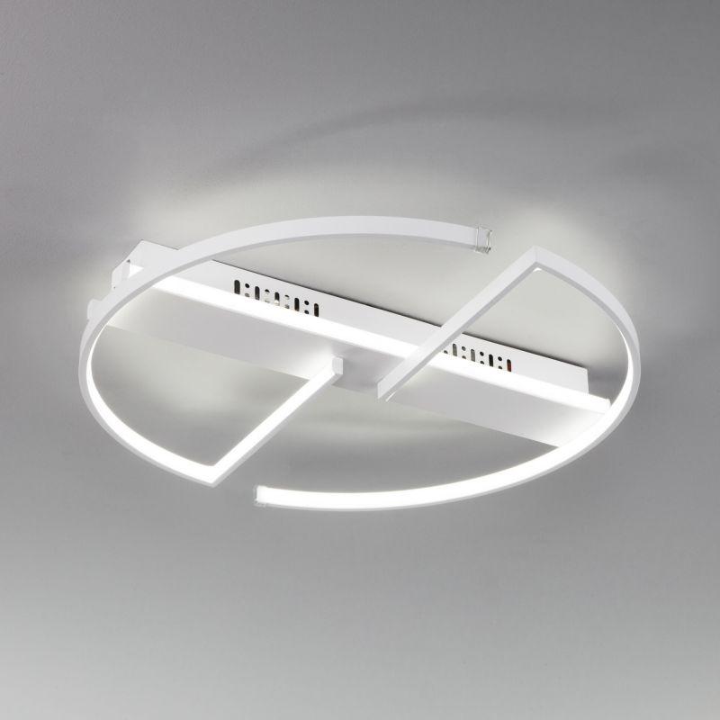 Потолочный светодиодный светильник с пультом управления Eurosvet Griff 90233/2