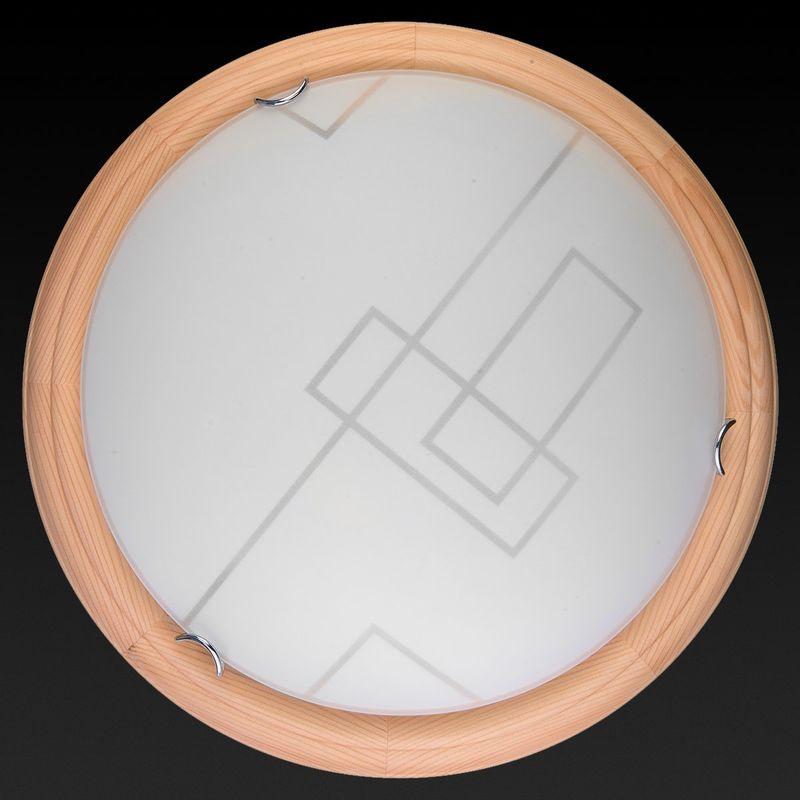 Настенно-потолочный светильник Debora TL9540Y-00PN. Фото №1