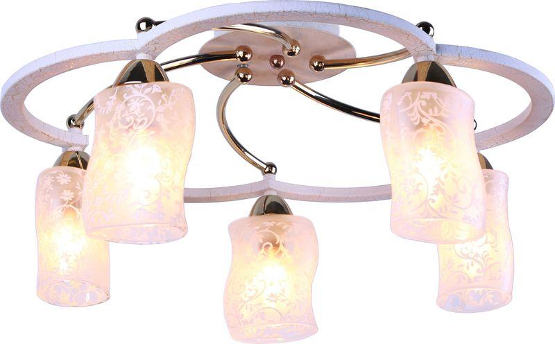 Светильник потолочный Arte Lamp Gianni A6166PL-5WG